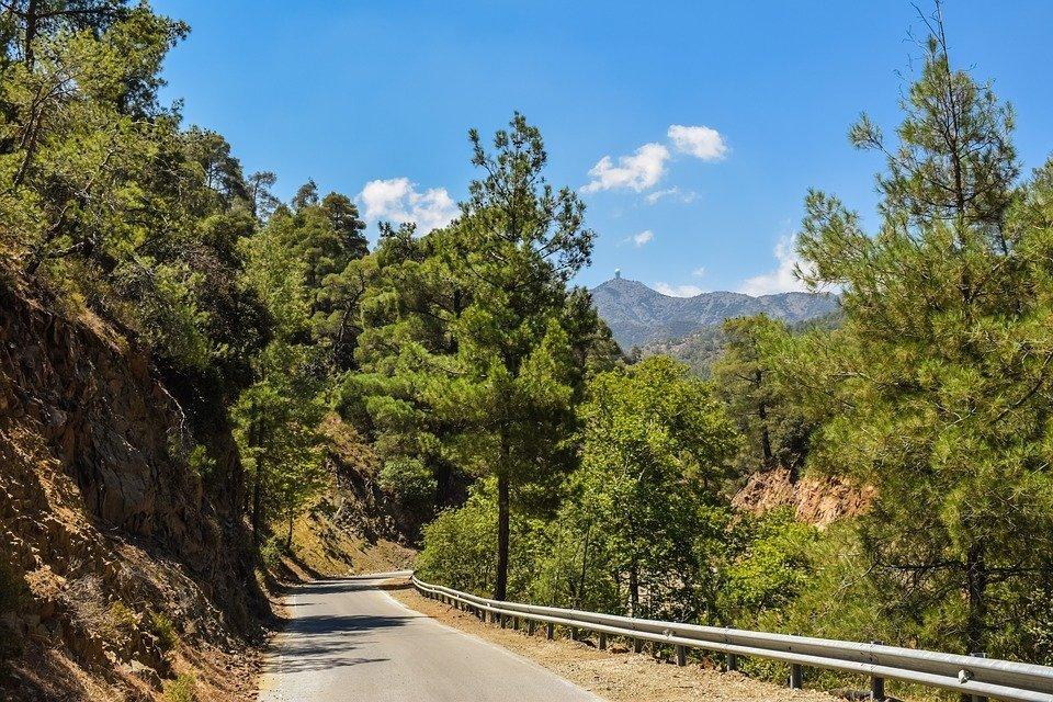 Road, Forest, Countryside, Landscape, Summer, Rural